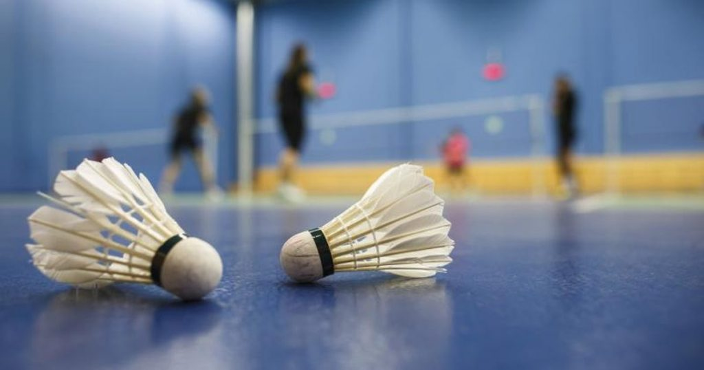 badminton-birdies-court