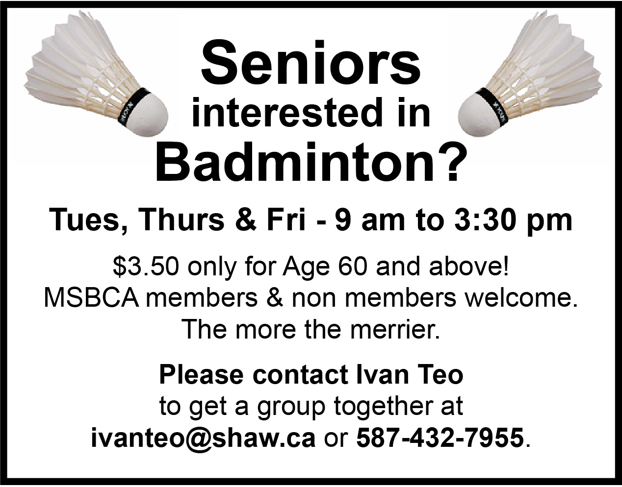 seniors-badminton