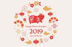 MSBCA Annual Chinese New Year Celebration